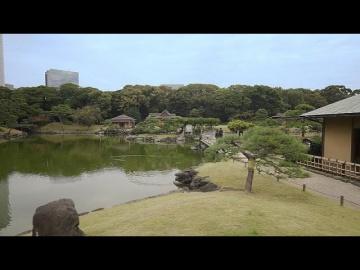 Умный город: Токио: зеленая столица продолжает озеленение - видео
